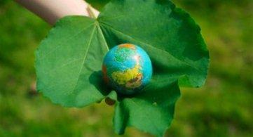 Sicurezza alimentare, le certezze dell'agricoltura bioetica