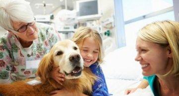 Un animale per amico: il potere della Pet Therapy